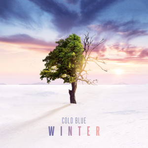 Cold-Blue---Winter